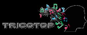 logo tricotop